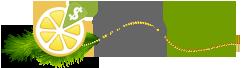 Обзор партнерской программы LimonBucks.com